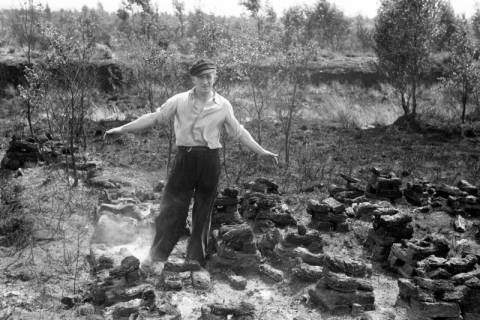 ARH NL Dierssen 1198/0016, Nach einem Moorbrand, Neustadt am Rübenberge, 1952