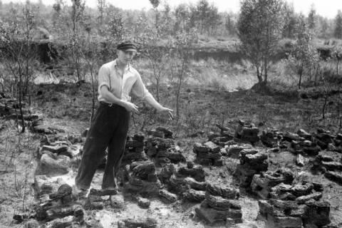 ARH NL Dierssen 1198/0017, Nach einem Moorbrand, Neustadt am Rübenberge, 1952