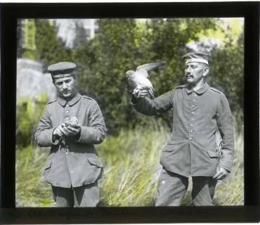 ARH NL Kageler 82, 1. Weltkrieg, Brieftauben in Mailly, Frankreich, zwischen 1914/1918