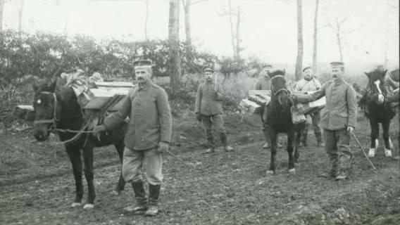 ARH NL Kageler 108, 1. Weltkrieg, Pferde als Tragetier, Priesterwald (Bois-le-Prêtre), Frankreich, zwischen 1914/1918