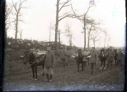 ARH NL Kageler 247, 1. Weltkrieg, Pferde als Tragetier, Priesterwald (Bois-le-Prêtre), Frankreich, zwischen 1914/1918