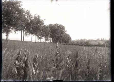 ARH NL Kageler 370, 1. Weltkrieg, Frankreich, zwischen 1914/1918