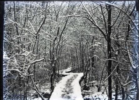 ARH NL Kageler 380, 1. Weltkrieg, Waldweg im Winter, Frankreich, zwischen 1914/1918