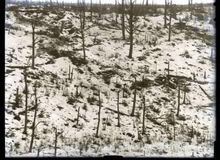 ARH NL Kageler 387, 1. Weltkrieg, Winter, Frankreich, zwischen 1914/1918