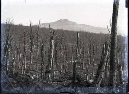 ARH NL Kageler 394, 1. Weltkrieg, Frankreich, zwischen 1914/1918