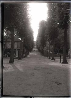 ARH NL Kageler 524, Kurpark?, Weg zur Wilhelmshöhe?, Kassel, vor 1914
