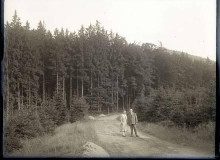 ARH NL Kageler 548, Ehepaar Kageler bei einem Spaziergang im Harz, 1913