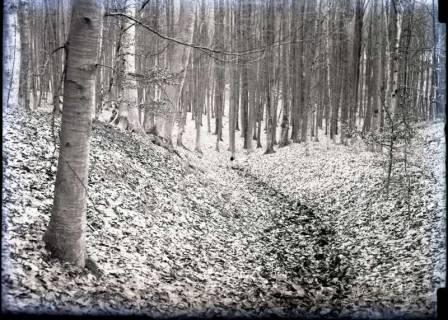 ARH NL Kageler 791, Talbildung durch Erosion, Erosionstal, Gehrdener Berg, 1940