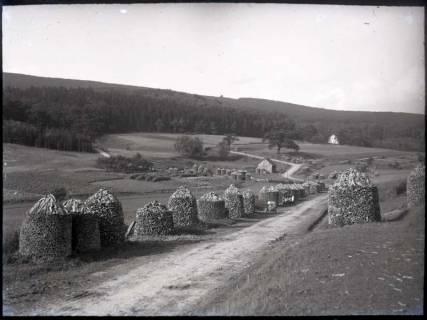ARH NL Kageler 827, Holzdimmer, Schwalenburg, Oberweser, ohne Datum