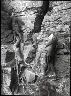 ARH NL Kageler 877, In den Felsen am Hohenstein, Süntel, ohne Datum