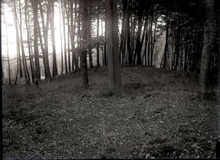 ARH NL Kageler 922, Hügelgrab, Mahlerten, ohne Datum
