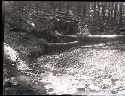 ARH NL Kageler 1108, Wildbach, Osterwald, ohne Datum