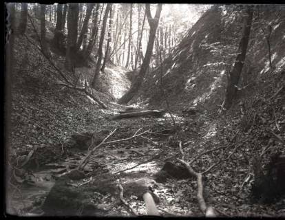 ARH NL Kageler 1109, Wildbach, Osterwald, ohne Datum