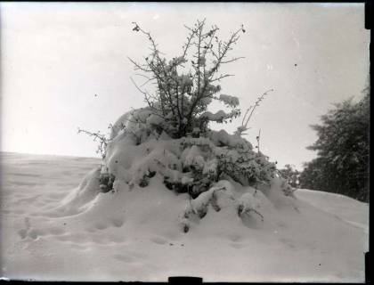 ARH NL Kageler 1117, Gehrdener Berg im Winter, ohne Datum