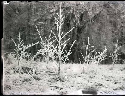 ARH NL Kageler 1118, Gehrdener Berg im Winter, ohne Datum