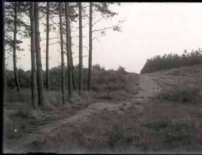 ARH NL Kageler 1132, Waldgebiet, Garbsen, ohne Datum