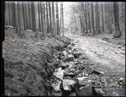 ARH NL Kageler 1151, Weg zum Süntelturm im Süntel, Hessisch Oldendorf, ohne Datum