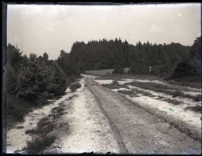 ARH NL Kageler 1160, Weg zu den Siebensteinhäusern, Bad Fallingbostel, ohne Datum