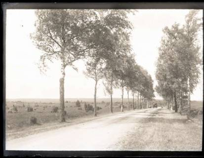 ARH NL Kageler 1171, Birkenallee, Lutterloh, ohne Datum