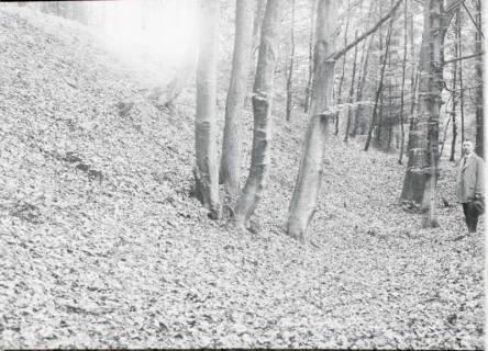 ARH NL Kageler 1191, Bennigser Berg, Deister, ohne Datum