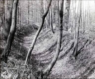ARH NL Kageler 1296, Bücketaler Landwehr, Deister, 1940