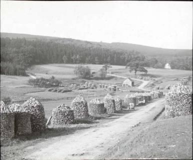 ARH NL Kageler 1330, Holzdimmer, Schwalenburg, Oberweser, ohne Datum