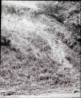 ARH NL Kageler 1429, Lößhang, Gehrdener Berg, ohne Datum