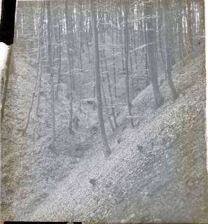 ARH NL Kageler 1504, Erosionstal, Deister, ohne Datum