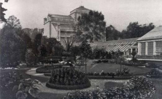 ARH NL Koberg 50, Palmenhaus im Berggarten Herrenhausen, Hannover, vor 1939