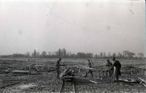 ARH NL Koberg 633, Entfernung von Tarnholz bei der Räumung des Maschsees zwecks Nutzung als dringend benötigtes Bauholz, Hannover, 1945