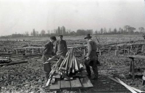 ARH NL Koberg 634, Entfernung von Tarnholz bei der Räumung des Maschsees zwecks Nutzung als dringend benötigtes Bauholz, Hannover, 1945