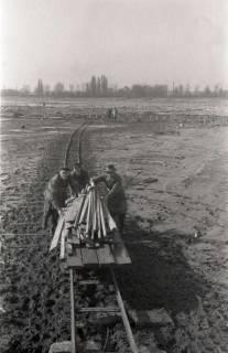 ARH NL Koberg 635, Entfernung von Tarnholz bei der Räumung des Maschsees zwecks Nutzung als dringend benötigtes Bauholz, Hannover, 1945