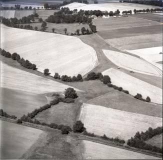 ARH NL Koberg 1365, Landschaftsstruktur mit Feldern, Kaltenweide, 1969