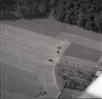 ARH NL Koberg 1369, Ernte auf den Feldern, Resse, 1969