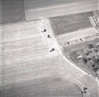 ARH NL Koberg 1370, Ernte auf den Feldern, Resse, 1969
