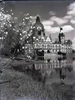 ARH NL Koberg 173, Neues Rathaus und Maschteich, Hannover, wohl 1955