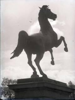 "ARH NL Koberg 176, ""Springendes Pferd"" (Sachsenross) vor der Universität, Hannover, wohl 1955"