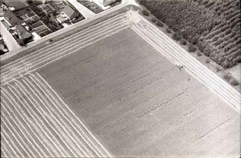 ARH NL Koberg 1778, Erntearbeiten, Gronau, 1971