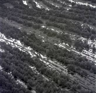 ARH NL Koberg 1825, Kaltenweider Moor, 1971