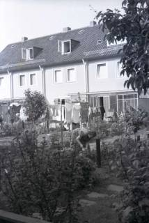ARH NL Koberg 252, Hannover, 1958