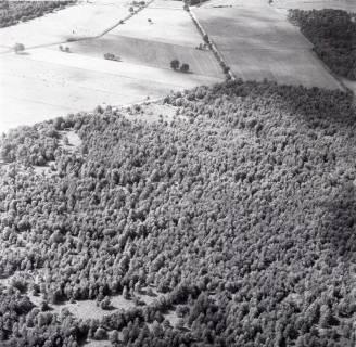 ARH NL Koberg 2691, Helstorfer Moor, Neustadt am Rübenberge, 1976