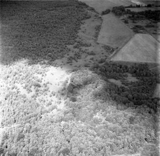 ARH NL Koberg 2694, Helstorfer Moor, Neustadt am Rübenberge, 1976