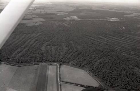 ARH NL Koberg 2698, Helstorfer Moor, Neustadt am Rübenberge, 1976