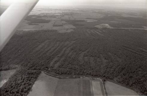 ARH NL Koberg 2699, Helstorfer Moor, Neustadt am Rübenberge, 1976
