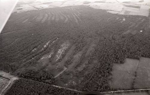 ARH NL Koberg 2717, Helstorfer Moor, Neustadt am Rübenberge, 1976