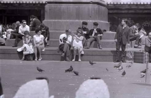 ARH NL Koberg 282, Tauben auf dem Ernst-August-Platz, Hannover, 1962