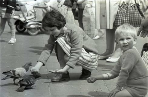 ARH NL Koberg 292, Tauben auf dem Ernst-August-Platz, Hannover, 1962
