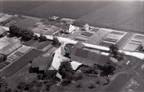 ARH NL Koberg 3162, Bredenbeck, 1960