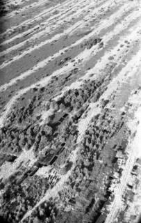 ARH NL Koberg 3297, Otternhagener Moor, Otternhagen, 1960