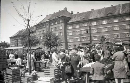 ARH NL Koberg 707, Wochenmarkt auf dem Friedrich-Ebert-Platz, Hannover, 1946